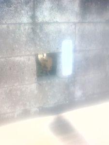 民家の庭の中にあかるさまに信号機用の押しボタンがある 栃木県上三川町 画像です