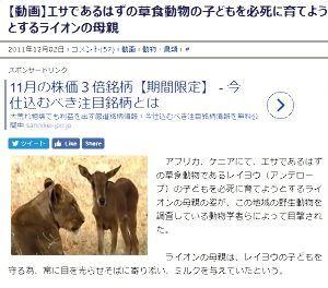 福島県少年、少女のなぜだろう?なぜかしら? > アイヌの女の子は、なぜ白人の女の子のように可愛いのですか?お父さんもイケメンですよね。