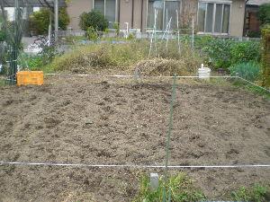 家庭菜園の新人 早速空いている家庭菜園を探して来ました。一区画が狭いので二区画を借りることに(広さは今と同じ位)。