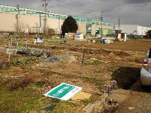 家庭菜園の新人 活気があった農園が看板も倒され、次々と更地になっていきます。 1年もしたら、工場が建っているでしょう