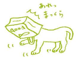 ことわざ教室 猫に紙袋  こんな諺があるなんて 知らなかったわ こんな遊べをしているいる人も いるのですね、  後