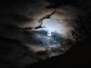 rirano花 今日は中秋の名月 夕方は晴れていたのですが今は曇り空  雲の隙間から見えるかな・・?