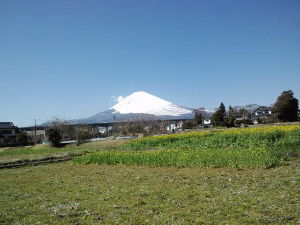 演歌♪歌謡曲♪好きな歌教えて~ お早う御座いますー久振りに晴れました゛厚い雲に覆われ富士は見えませんーーー午後の歩きが楽しみですーー