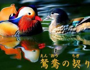 【50代からのしりとり】 鴛鴦の契り(えんおうのちぎり)・・・り  みなさん、おはようございます。今日6月14日は オリンピッ