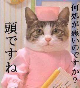日本の核武装を急げ >なに~ 電話番号だと?教えてやらん 🐈   大丈夫か?