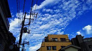 箱根の質問何でも下さい。 ここ数日秋晴れが続いていますが 今朝も寒いです。  今朝は午前2時頃から うちの近所に鹿が来ているよ