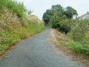 袋井市諸井問題 袋井市諸井、原野谷川堤防道、北134号線からの下り坂道の道幅が狭く危険なので地元のkatumi ku