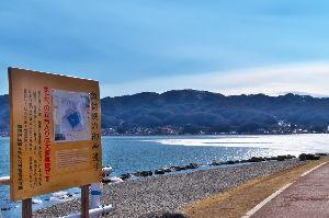 信州自然談話室 今週、暖かくなって氷も溶けました。 この氷も岸にぶつかって粉々です。  ようやく春近しという感じにな