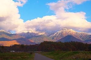 信州自然談話室 寒気が降りてきていますね。 八ヶ岳は積雪になりました。あちこちで雪のニュースが見られました。冬は近い