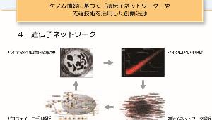 2160 ‐(株)ジーエヌアイグループ 四季報を眺めていると、特色=ゲノム解析に強みとある。 なんだろと調べてみた。2007年7月最初のIR