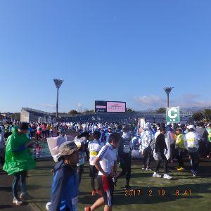 京都のタクシードライバーとお話ししませんか? 京都マラソンのスタート 西京極スタンド  中々良いモノでした