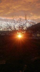 一日の想い出 ご無沙汰してます!  今日の朝陽   撮ってみました。