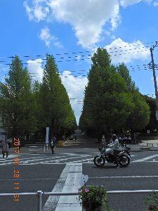 お暇な時間にどうぞ~♪  もしさん ロマンさんお早う御座います、昨日は綱島駅前で三人会飲み会が 二月に引き続き有り、途中駅迄