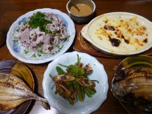 ももの家の晩御飯(´∀`) 14日メニュー  冷しゃぶサラダ グラタン 鯵の干物 しし唐ちくわの炒め物