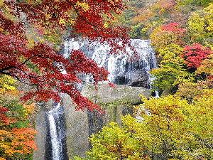 心の癒し・・神社・仏閣巡り 仙人さん今日は、熊野本宮大社のアメリカの友達は私とは一回りも違う大先輩で 特攻隊の生き残りの人なんで