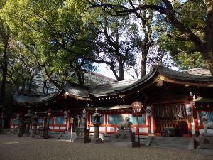 9021 - 西日本旅客鉄道(株) おうさか、全豪頑張ってね~ 大阪も万博、カジノ?賑わったら・・・ JRいいね! ひらの界隈の神社、参