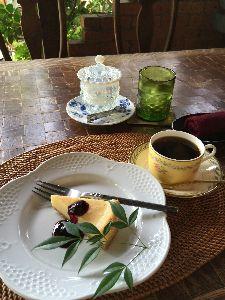 ケーキでも食べに行きましょ〔女性同士のお茶友作りませんか〕 こんにちは(^^) うおこさん、「Hana art」良さそうなカフェですね💕ネットで見ました この前