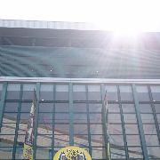 プロ野球 阪神