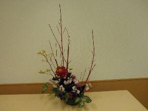 。・:*:・゚☆和みの時間。・:*:・゚☆ お花の写真選んだけど成功してるか??