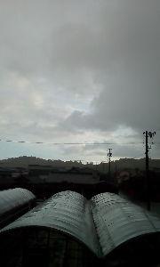 気楽に おいで 優子様おはようございます〜。=_=(TT):-) 今も雨☔雷⚡もなり異様ナ朝です 午前中 のんびりし