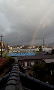 気楽に おいで 皆さんおはようございます。^_^(+_+) 優子様おはようございます〜。 此方も一瞬雨☔ 雨☔の中の