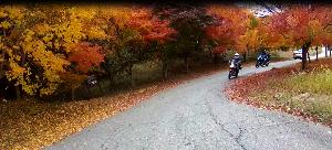 シニア のんびり一人旅のライダー ゴンさん 皆さん( ノ゚Д゚)こんにちは~  今シーズンの河口湖ツーリングが終了しましたので・・・