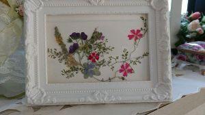 春の日差しの中でゆ~ったり気分・・・ 押し花を初めて絵にできました!すごく感動した!😃✨これからもっと頑張ろ〜ッと!
