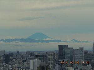 日本中を襷で繋ぎませんか? 土砂降りの中スタート、、、青襷はカッパ着ちゃったので目立たず残念でした(ノД`)・  15㌔地点がス