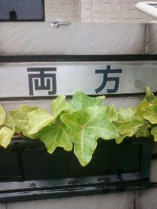 田舎と言えば栃木県 両方 と言う表札 宇都宮市
