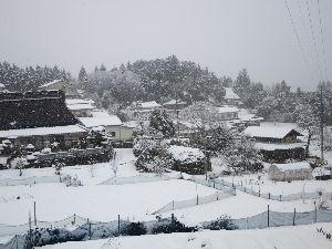 野菜作りお花等もされる方お話したいです  こんばんわ   雪はここも重たいのが10cmくらい降りましたね。  明日の朝は凍結で大変でしょう。
