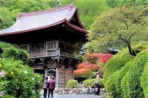 チェンマイ暮らしも慣れました ツツジ寺(3) 外から見た山門