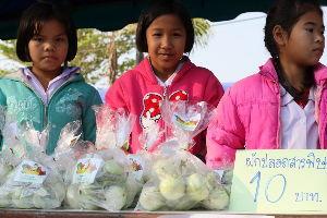 チェンマイ暮らしも慣れました チェンマイの何処かの小学校の生徒達が丹精を籠めて育てた丸い茄子、1袋THB30(約30円)で 安い