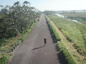 大井川マラソン初挑戦 蓬莱橋から見た下流側です。 今朝の静岡新聞の地域中ではフルに8649人のエントリーでした。 愛知県か