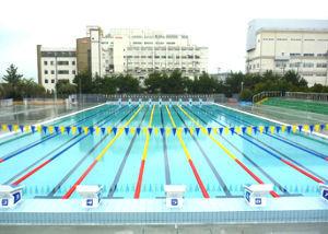 1994 - 高橋カーテンウォール工業(株) 先のオリンピックからのプールも老朽化 自治体も 今回を期に検討に入ったのではと期待してます。
