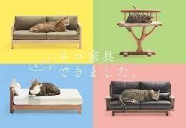 別館   Ψ( ̄∇ ̄)Ψ この猫家具可愛いなあー(・ω・)ノ