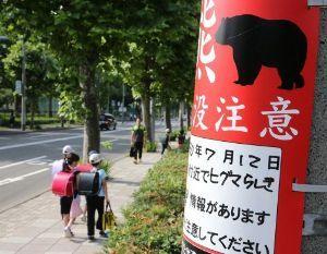 暇人の宿 西日本は猛暑が続いてるんですね 此方は昨日今日は24度くらいですが22度前後の日が続いてます そして