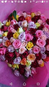 白い紙に 適当に書き込みを・・・ 花の無い時 以前に撮った花を