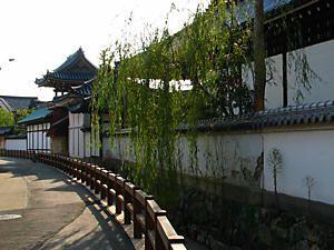 メル友になりませんか? まだまだ、綺麗所の写真を、添付します、 此れは、三木露風の菩提寺の妙法寺通です。 立岩