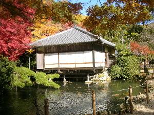 メル友になりませんか? 未だ幾らでも有るよ、此処は旧城下町です。 此の周縁亭は此処の殿様が京都の 所司代の時京都御所が火事に