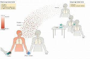 3401 - 帝人(株)  平石氏記事での主引用文献であるnature論文  〈呼吸器ウイルスの伝染性と伝染〉 - natur