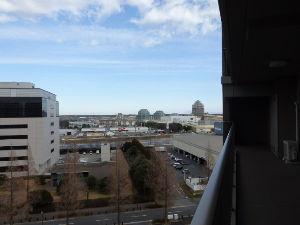 庭師さん!! 大集合 東さん 元気でしたか^^ 冬は空気が澄んで筑波山が良く見えますが、 これから春になると水蒸気が多くな