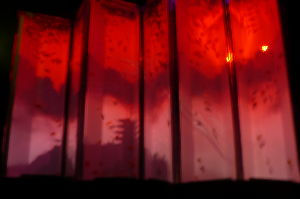 退屈しのぎに ブツブツ・・・ 水槽が赤く染まった