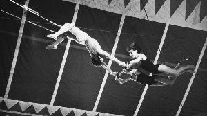 8135 - ゼット(株) トランポリン競技はサーカスが起源だって  どうりで衣装もシューズもそのまんま・・・
