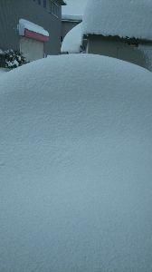 双極性障害Ⅱ型の話し合いの場 2月に入っての、豪雪はきついです❗これは午前中の息子の車です。今はもっと積もっています。家から、出ら