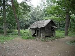 3092 - (株)ZOZO 自然に囲まれた家も美しいと思います。  ドブネズミみたいに美しくなりたい。 写真には映らない美しさが