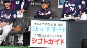 2016年5月13日(金) 日本ハム vs 西武 9回戦 田辺監督辞任して転職しましょう! いいサイトありますよ。