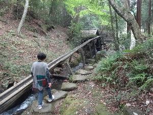 たくさん癒し合いましょ♪  くぅちゃん オハヨー  昨日は何もなかったから、日帰り温泉に行ってきました 水戸市近くの城里町のホ