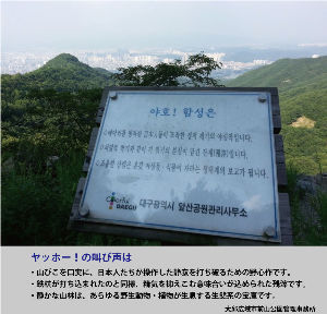 渡辺喜美議員を支援しない♪ 日帝風水侵略説をご存知ですか??         今でも韓国では根強く残っています・・・     下