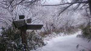 ☆☆岡山の山、大好き☆☆ 県北の山です。朝はお天気が良かったのに雲ってしまって、せっかくの霧氷が墨絵でした、