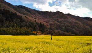 ☆☆岡山の山、大好き☆☆ barbers さん  以前から気になっていたのですが この時間に山に登る時間待ちが有ると言う 仕事